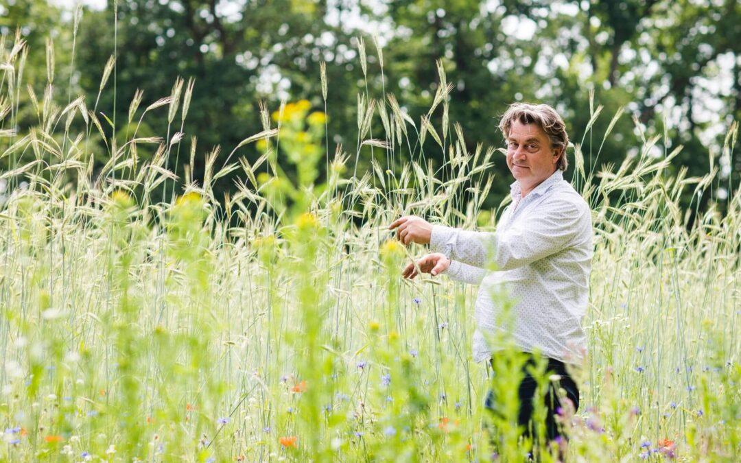 Oude gewassen keren terug op de boerderij van Marcel Silfhout